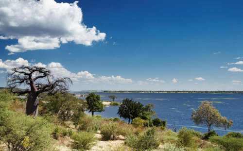 Chobe rivier, Botswana