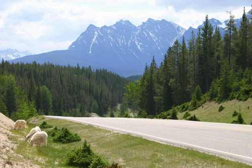 Canada, Rocky mountains