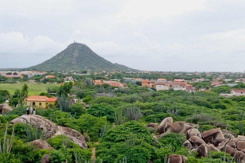 Het landschap met op de achtergrond de Jamanota, het hoogste punt van Aruba. Het eiland heeft een dor en rotsachtig landschap met veel cactussen en de karakteristieke divi-diviboom, die naar één kant groeit. Het westen van het eiland is vlak en dicht bevolkt. In het oosten van het eiland, waar het Nationaal Park Arikok is, is het heuvelachtiger.