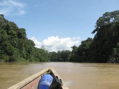 De Amazone…