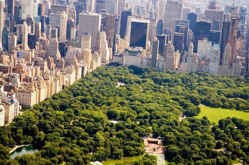 stedentrip naar new york central park