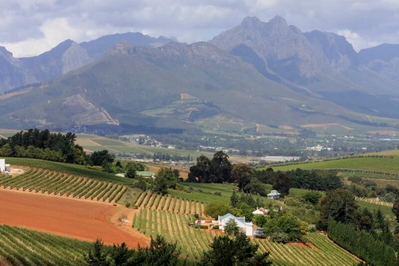 Zuid-Afrika wijnroutes Stellenbosch