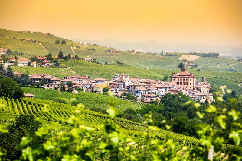 wijnstreek Piemonte