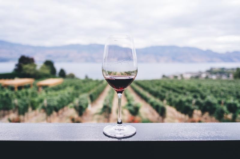 wijnstreek Vittoria