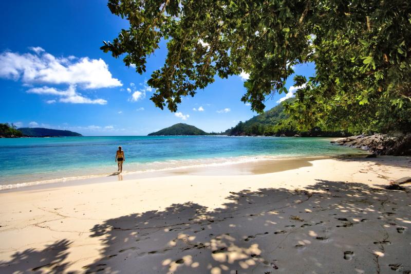 Seychellen eilanden mooi strand